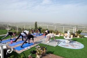 ההשפעות העסקיות של יוגה בטבע